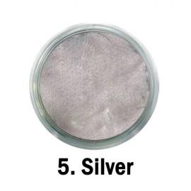 Acril Paint - no.05. - Silver